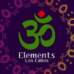 Elements (Indian & Vegan)